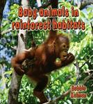 Baby Animals in Rainforest Habitats (Paperback)