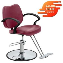 Salon Chair Barber Chair Styling Heavy Duty Hydraulic Pump Barber Chairs Beauty Salon Chair Shampoo Barbering Chair For Hair Sty