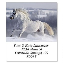 For Horse Lovers Self-adhesive Flat-sheet Select Address Labels 12 Designs