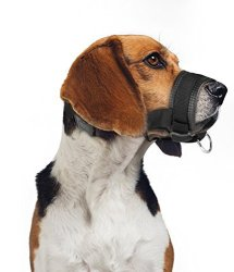 ONSON Dog Muzzle - Adjustable And Comfortable Nylon Muzzles For Small Medium Large Extra Dog - Stops Biting Safe Retraining Of Aggressive Dogs XL
