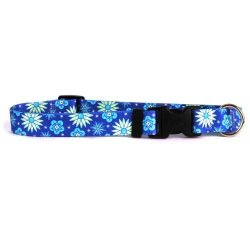 """Yellow Dog Design Teal Flowers Dog Collar With Tag-a-long Id Tag SYSTEM-LARGE-1"""" Wide And Fits Neck 18 To 28"""