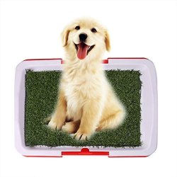 Onpiece Funny Pet Dog Potty Toilet Urinary Trainer Grass Mat Pad Patch Indoor Outdoor Home