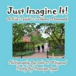 Just Imagine It A Kid&#39 S Guide To Odense Denmark Large Print Paperback Large Type Edition