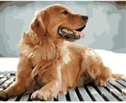 USA Classic Jigsaw Puzzle 1000 Pieces Adults Children Wooden Puzzle Diy Lookout Golden Retriever Animal Modern Home Decor Wall Art Intelligence Game Uniqu