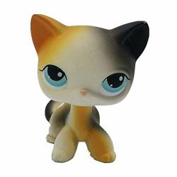 Cute Animal Pet Cat Collection Child Girl Cat Figure Toy
