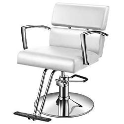 Baasha Salon Chairs For Hair Stylist With Hydraulic Pump Hair Styling Chair Beauty Equipment Chairs For Salon White Styling Chai