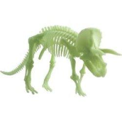 Edu Toys Glow In The Dark Triceratops Skeleton 22CM