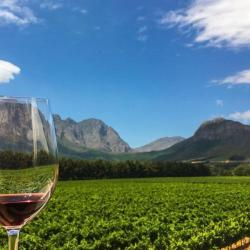 Winelands Celebration Experience - Facial