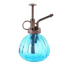 Calunce MINI Clear Glass Decorative Retro Water Spray Bottle Plant Mister  200ML Blue | R685 00 | Garden Accessories | PriceCheck SA