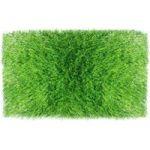 Evergreen Artificial Grass 1 Tone 2.00 X 3.00