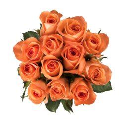 Orange Roses 50CM 14 Stems