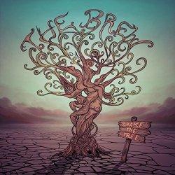 Shake The Tree Cd