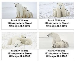 Carousel Checks Mama Bear And Cubs Address Labels