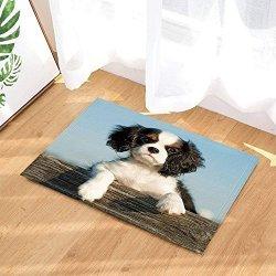 Fdswdfg221 Animal Bath Rugs By Pet Dog On Wooden Palings Non Slip Doormat Floor Entryways Indoor Front Door Mat Kids Bath Mat 15 R71000 Garden