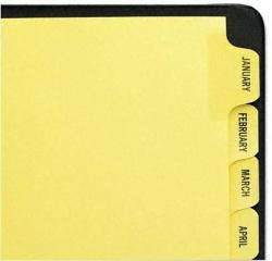 USA Avery : Reinforced Laminated Tab Dividers 12-TAB Months Letter Buff 12 Per Set -:- Sold As 2 Packs Of - 12 - - Total Of 24 Each