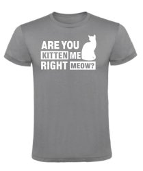 Are You Kitten Me T-Shirt - 13-14