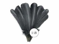 1 Lb. Silver Gray Turkey Tom Rounds Secondary Wing Quill Whole Feathers Bulk Halloween Craft Supply Moonlight Feather